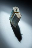 The stack of money: shadow incomes. The stack of russian money: shadow incomes stock image