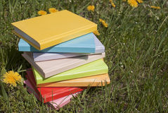 Stack of the multi-colored books Royalty Free Stock Image