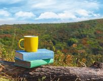 Stack of multicolored books and a cup of hot coffee on the stump in the forest. Back to school. Education concept. Royalty Free Stock Images