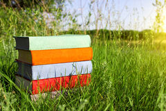 Stack of multicolored books on the green grass on the background of beautiful nature surrounded by meadows at sunny day. Stock Photo