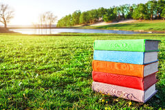 Stack of multicolored books on the green grass at sunset. Recreational pursuits. Leisure activities.
