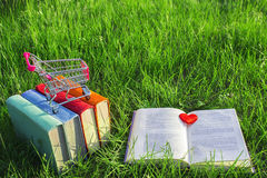 Stack of multicolored old books and open book on the grass at nature, small cart, outdoor office.