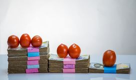Stack of nigeria naira notes and tomatoes - increase in food commodity royalty free stock photos