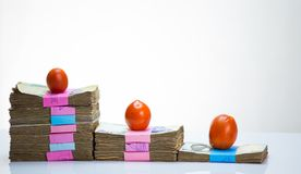 Stack of nigeria naira notes and tomatoes - increase in food commodity stock image
