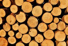 Stack od wood Royalty Free Stock Photography