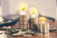 Free Stack Of Coin With Tree Growing In Light Bulb ,idea For Business Growth Stock Images - 106537664