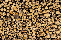 Free Stack Of Firewood Stock Photography - 30894672