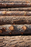Stack Of Wood Royalty Free Stock Photo