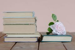 Stack of old books with rose. A Stack of old books jn wooden background and rose stock image