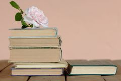 Stack of old books with rose. A Stack of old books jn wooden background and rose stock images