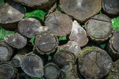 Stack of old gray aging wood Stock Photos