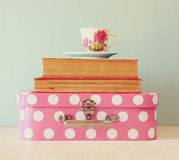 Stack of old suitcase, books and vintage tea cup over wooden table. retro style image.  Royalty Free Stock Photography