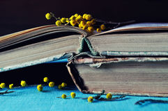 Stack of old worn book with small mimosa branches. Dark vintage filter processing. Stock Photos