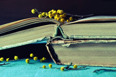 Stack of old worn book with small mimosa branches. Dark vintage filter processing. Royalty Free Stock Images