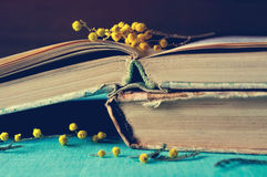 Stack of old worn book with small mimosa branches. Dark vintage filter processing. Royalty Free Stock Photo