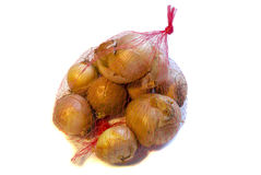Stack of onion on white background. ! Royalty Free Stock Photos