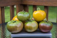 Stack Of Organic Heirloom Tomatoes Stock Images