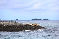 Stack of pebbles on beach, Koh Hin Ngam, Andaman Sea, in Tarutao Stock Image