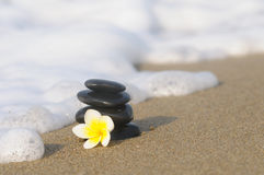 Stack of pebbles with flower Royalty Free Stock Photo