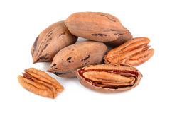 Stack of pecan nuts Royalty Free Stock Photo