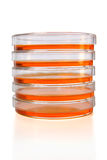 Stack of Petri Dishes stock photography