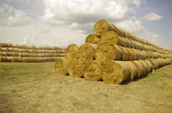 Stack. The picture shows a landscape of hay stacked neatly in rolls. Hay is a sloping meadow grass, which later presets a certain way Stock Photos