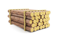 Stack of pine logs Stock Photography