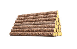 Stack of pine logs Stock Images