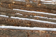 Stack of pinewood logs from aside. Stack of pinewood logs from aside covered with snow Stock Photos