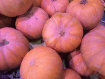 Stack of pink fresh pumpkins Royalty Free Stock Photo