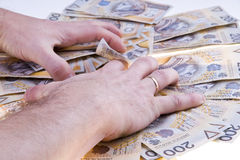Stack Polish money Stock Photography
