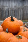Stack of pumpkins Royalty Free Stock Photography
