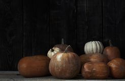 Stack of pumpkins after harvesting Royalty Free Stock Photography