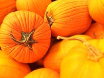 Stack of Pumpkins. Pumpkins sitting in a bin awaiting to go to market Royalty Free Stock Image