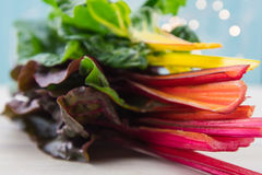 Stack of Rainbow Chard Fills Frame. With colors in order Royalty Free Stock Image