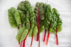 Stack of Rainbow Chard Leaves Stock Photography