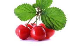 Fresh cherry on a white background stock photography