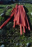Stack red plastic electricity cable protection pipes on street lawn royalty free stock image
