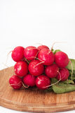 Stack of red radish on wooden board.  Stock Photography