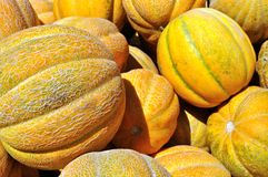 Stack of ripe organic  melons Royalty Free Stock Photography