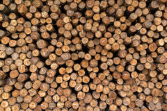 Stack of rough sawn timber Stock Image