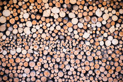 Stack of round cutted firewood pieces Stock Photos
