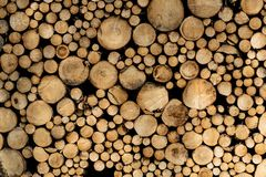 Stack of sawn logs. Natural wooden decor background. royalty free stock photography