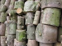 Stack of sawn stems of trees near the road in the woods stock images