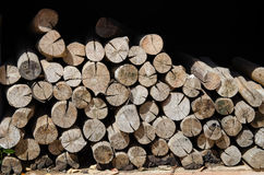 Stack of the several crosscut Stock Photos