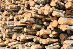 Stack of Logs Detail Royalty Free Stock Images