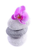 Stack of spa stones with flower Stock Photography