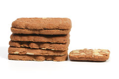 Stack of speculaas cookies Royalty Free Stock Photo
