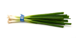 A stack of spring onions on white background. The onion stalks used in cooking Royalty Free Stock Photos