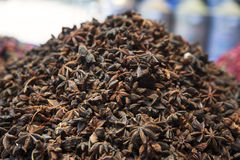Stack of star anise seeds. The crop of Illicium verum plant, with extensive culinary and medical use in Asian and African countries at the medina herbal Stock Image